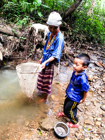 Maehongson,THAILAND -june 15,2014:The remote village Mae Hong Son,thailand Deep in the summer, most people, including children, are out looking for food near a creek in the woods near the house.Which is a food source that is readily available in the area  Editorial