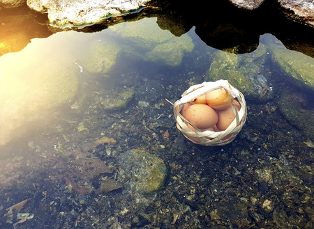 Boiled eggs in natural hot spring, eggs in basket,Soft focus,Select focus. Stock Photo - 122196399