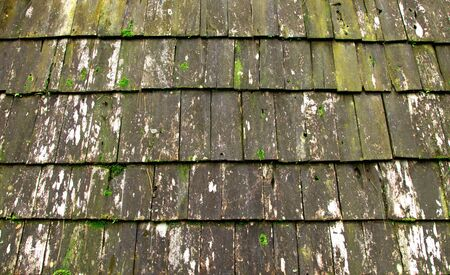Old mossy shingles on a wood roof is farmhouse.