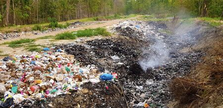 environmental damage of garbage in the nature. garbage and smog in forest Фото со стока