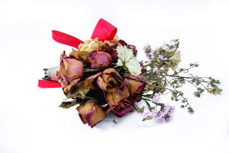 lost love: A wilting rose signifies lost love, divorce, or a bad relationship Stock Photo