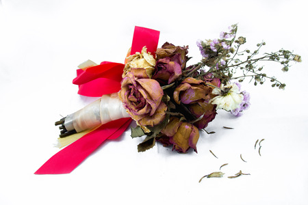 signifies: A wilting rose signifies lost love, divorce, or a bad relationship Stock Photo