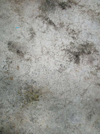 polished floor: concrete polished floor