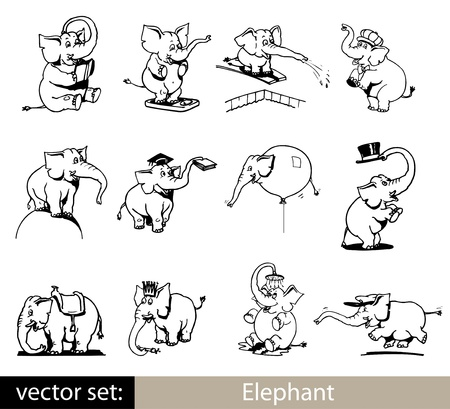 illustration with set of elephants isolated on white background Vector