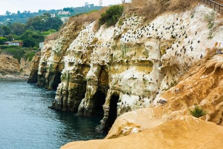 Sea wall in La Jolla Cove, California Stock Photo