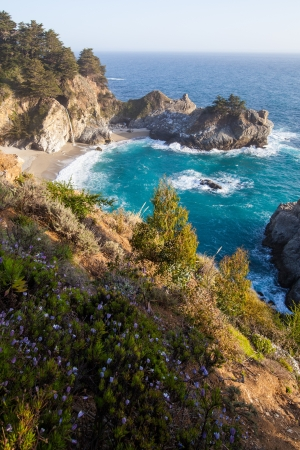 mcway: California coast in spring - Mcway falls with wild flowers  Stock Photo