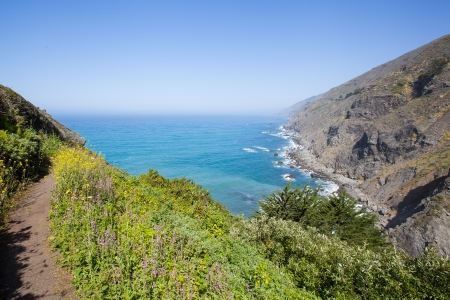 California coastline in summer photo