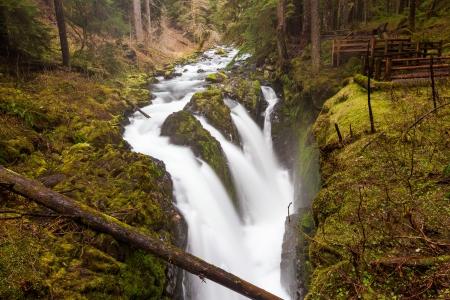 sol duc river: Sol Duc falls, national park, WA US