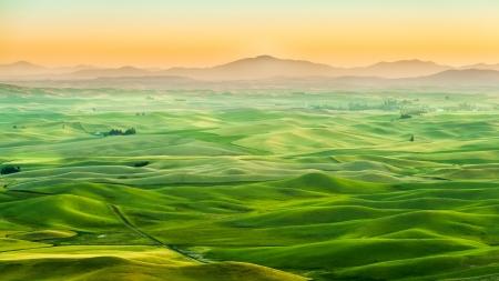 palouse: Beautiful landscape of crop field in Palouse