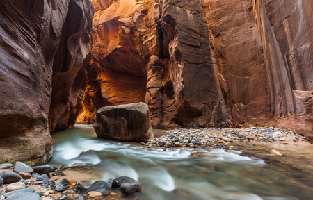 zion: The Narrows trail, Zion national park, Utah