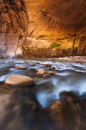 slot canyon: Sandstone wall in the Narrows, Zion national park, Utah.