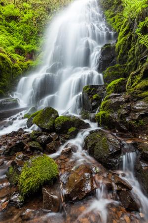columbia: Fairy falls in Columbia River Gorge, Oregon.