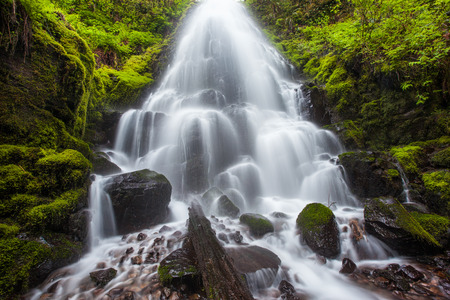 oregon cascades: Fairy falls in Columbia River Gorge, Oregon.