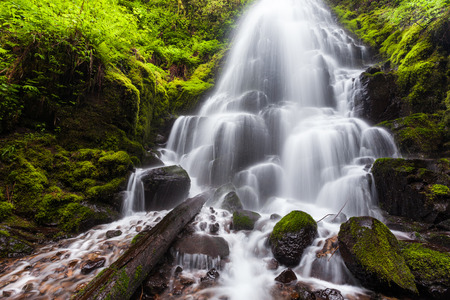 gorge: Fairy falls in Columbia River Gorge, Oregon.