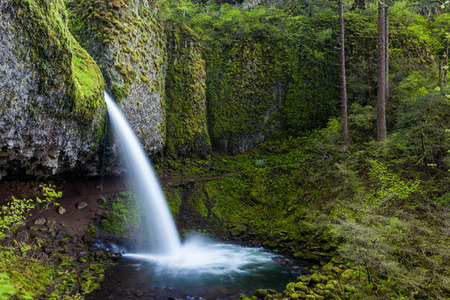 ponytail: upper ponytail falls in Columbia river gorge, Oregon Stock Photo