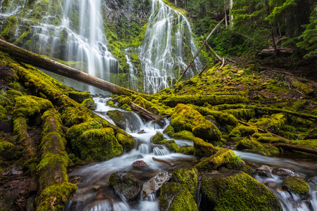 proxy falls: Beautiful proxy falls in Oregon forest