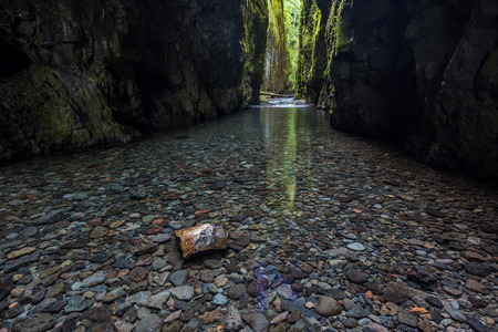 gorge: hiking in Oneonta gorge trail, Oregon