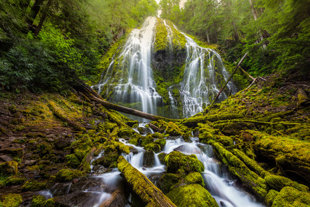 proxy falls: Beautiful Proxy falls in mist, Oregon. Stock Photo