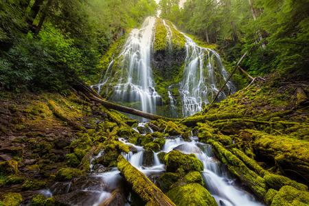 proxy falls: Beautiful Proxy falls in mist, Oregon. Stock Photo