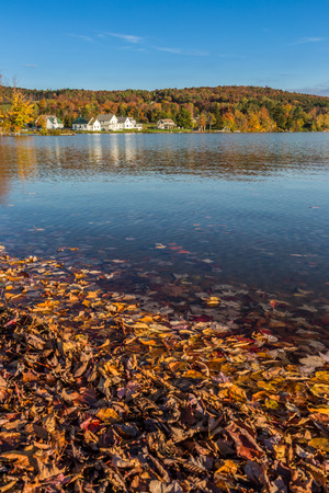 state park: Autumn foliage in Elmore state park in Vermont. Stock Photo
