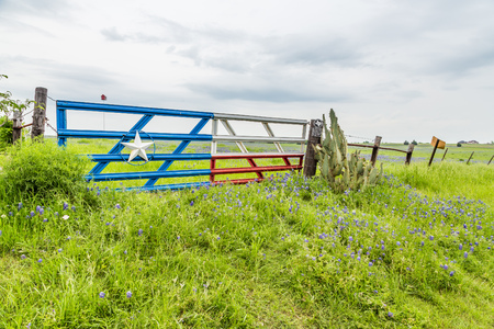 bluebonnet: Bluebonnet field and Texas flag gate in countryside of Ennis, TX Stock Photo