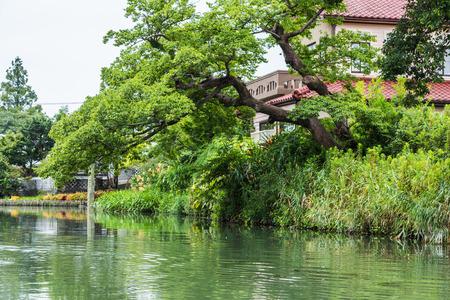 downstream: View from traditional boat tour in Yanagawa, Fukuoka, Japan Stock Photo