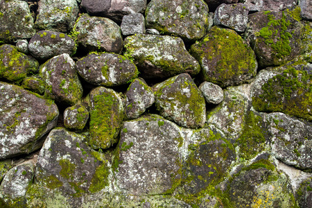 moss: Old moss covered stone wall texture.