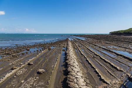 Devils Washboard coastline in Aoshima island, Miyazaki, Japan