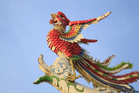 Phoenix on Chinese Temple