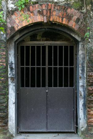 lichen: old door with lichen