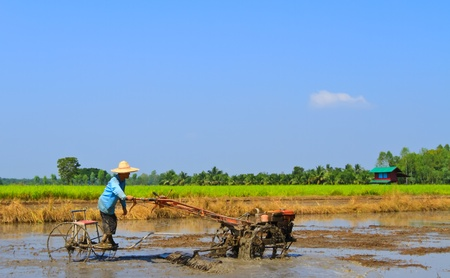 Thai farmer, Plowing to planting rice