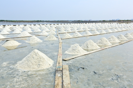Salt piles photo