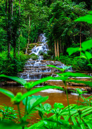 waterfall river: Waterfall in tropical rain forest
