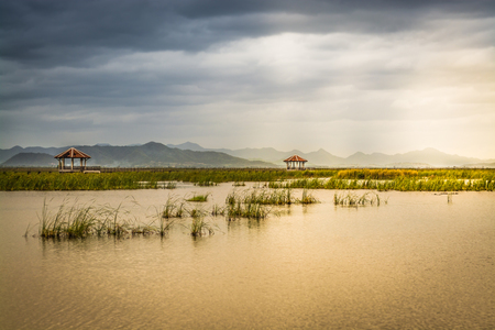 Lotus lake at pranburi, prachoupkirikhan, Thailand