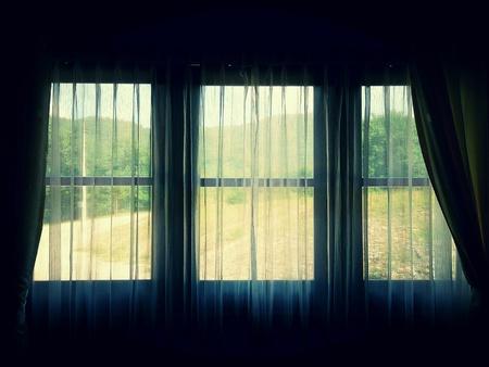 blinds: White blinds