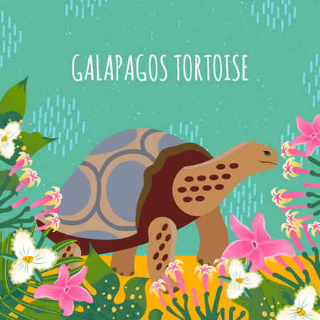 Cartoon style icon of galapagos tortoise with tropic leaves and flowers. A cute character with text for different design. Vector illustration.