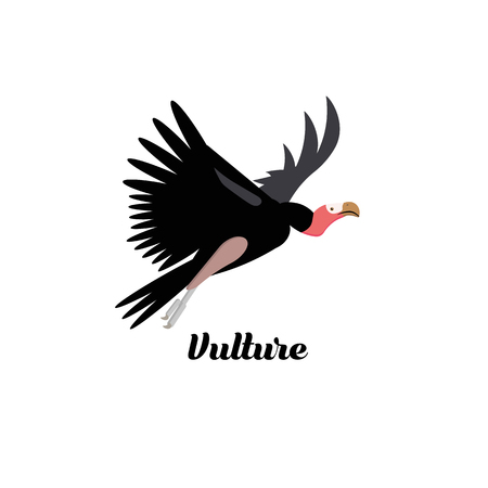 Cartoon style icon of vulture. Cute character with text for different design. Vector illustration. Illustration