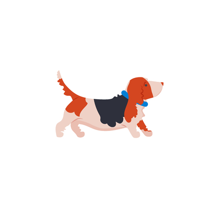 Icon of basset hound for different design. Vector. Vectores