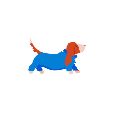Cartoon style icon of basset hound in overalls. Vector illustration.