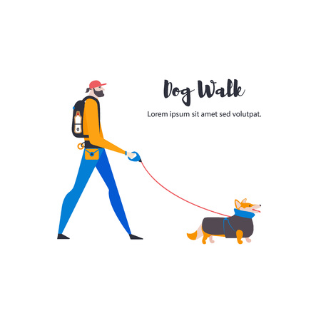 Welsh Corgi Cardigan and personal dog-walker. A man with a pet. Vector. Çizim