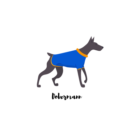 Icon of dobermann with text. Cute family dog. Vector.