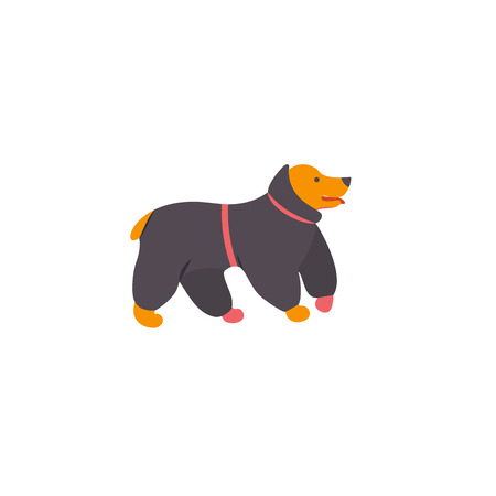 Icon of english cocker spaniel. Dog in overalls. Vector.