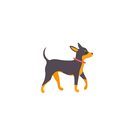 Icon of russian toy terrier. Cute family dog. Vector.