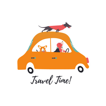 Design template card with funny dogs on retro transport. Icons of a car, corgi, basset hound, dachshund. Vector illustration. Illustration