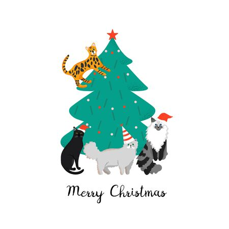 Merry Christmas holiday poster with funny cats. Illustration