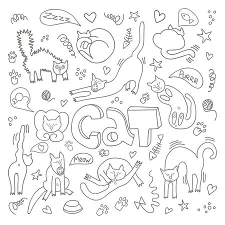 Handgezeichnete Vektorgrafiken von Katzenfiguren. Flacher Stil. Doodle mit Schriftzug Cat