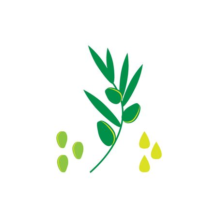 Olive oil icon. Flat vector illustration of seeds, plants and a drop of oil.
