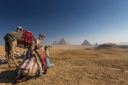 pyramid egypt: Egypt. Cairo - Giza. General view of pyramids Stock Photo