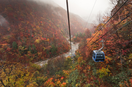 Autumn in cable car