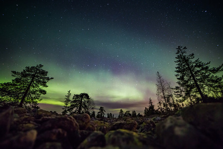 A beautiful green and red aurora dancing Фото со стока - 50040834